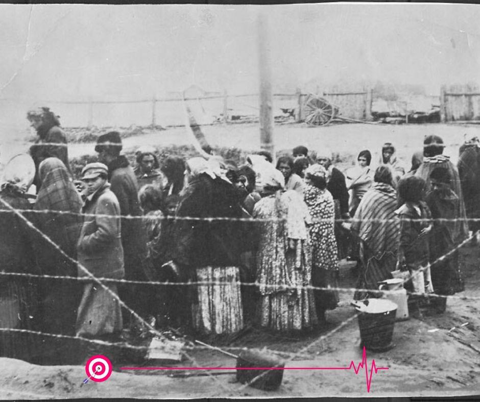 Геноцид цыган